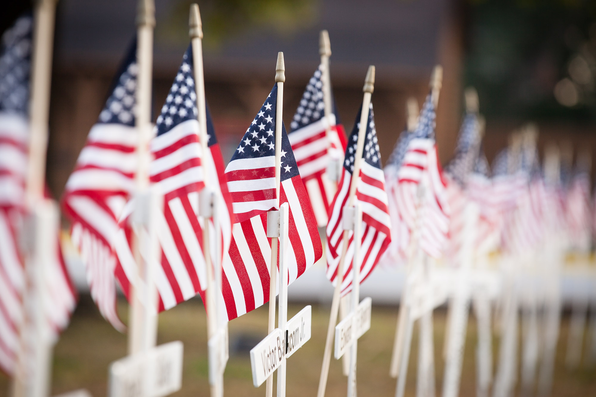 The local chapter American Legion helps our citizens and visitors honor our fallen Early County servicemen and servicewomen on Memorial Day and Veterans Day with a magnificent display of flags and crosses marked with their names every year.